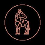 2021-03-08-Logo-sekundär1-Aprikose